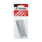 Гвоздь строительный TUNDRA krep, 3х80 мм, оцинкованный, в упаковке 10 шт.