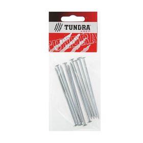 Гвоздь строительный TUNDRA krep, 3.5х90 мм, оцинкованный, в упаковке 10 шт. Ош