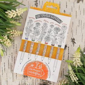 """Растущие карандаши """"Цветочный карнавал"""" набор 6 шт. цветные"""