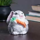 """Копилка """"Кролик маленький"""" 10см серый"""