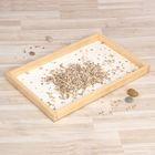 Ящик для игр с сыпучими материалами (56*40 см)