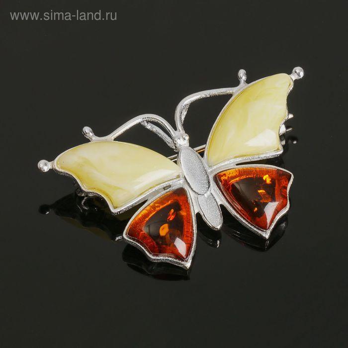 """Брошь """"Янтарь"""" бабочка малая в посеребрении"""