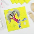 """Салфетки бумажные """"Барбоскины"""", 25 × 25 см, набор 12 шт., виды МИКС"""