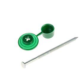 """Гвозди для ондулина """"СТРОЙБАТ"""", 80 мм, с пластиковой шляпкой, зеленые, 100 шт."""
