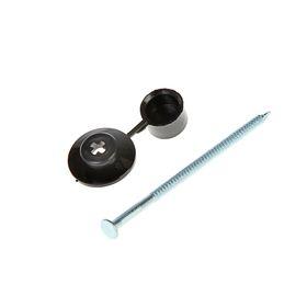 """Гвозди для ондулина """"СТРОЙБАТ"""", 80 мм, с пластиковой шляпкой, черные, 100 шт."""