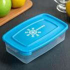 """Контейнер для замораживания продуктов 700 мл """"Морозко"""", цвет голубой"""