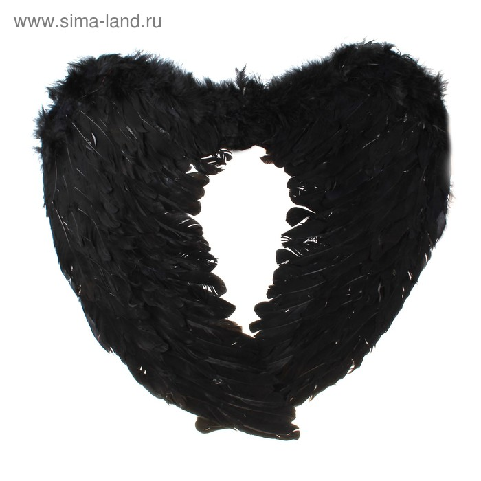 Крылья ангела, цвет чёрный