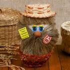 Сувенир «Домовой Афоня в плетеной корзинке», микс