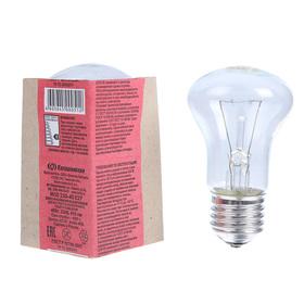 Лампа накаливания М50, 40 Вт, E27, 230 В, КЭЛЗ Ош