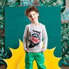 """Джемпер для мальчика """"Енот"""", рост 116 см, цвет серый 132-008-02"""