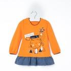 """Джемпер для девочки """"Мурлыка"""", рост 86 см, цвет оранжевый, принт кот ДДД040067_М"""