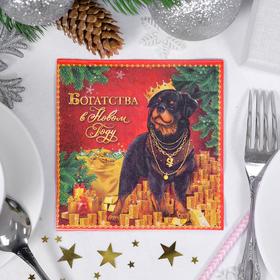 """Салфетки бумажные """"Богатства в Новом году!"""", 25 х 25 см, 20 шт."""