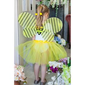 """Карнавальный набор """"Пчёлка"""", 2 предмета: крылья, юбка двухслойная, 3-5 лет"""