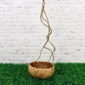 Кашпо «Африка», подвесное, D=12 см, Н=8 см, кокос