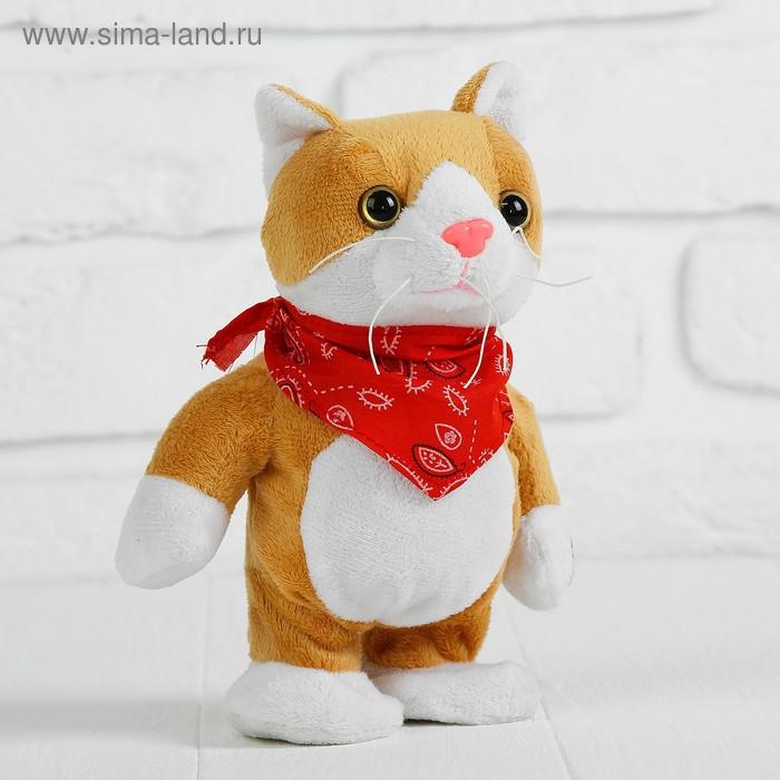 """Мягкая игрушка интерактивная """"Котик"""" в платочке, в коробке"""