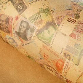 Бумага упаковочная крафт 'Деньги'  70 х 100 см Ош