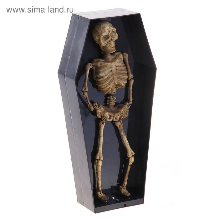 """Прикол """"Скелет в гробу"""" музыкальный, двигается, светится"""