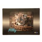Накладка на стол дизайнерская «Котёнок в лукошке», для девочки, 337 х 242 мм, КН 4-1