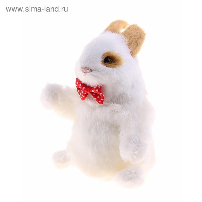 """Мягкая интерактивная игрушка-повторюшка """"Заяц с бабочкой"""", цвет белый"""