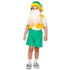 """Карнавальный костюм """"Гномик-1"""", плюш лайт, жилет, шорты, колпак, борода, рост 92-116 см"""