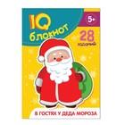 "Блокнот IQ ""В гостях у Деда Мороза"" 28 заданий 12 х 17 см 32 страницы"