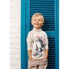 Водолазка для мальчика, рост 104 см, цвет серый 152-318-02