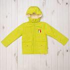 """Куртка для мальчика """"МИЛАНО"""" , рост 110, цвет салатовый 9 вида 140"""