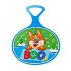 Ледянка «Boo», 310*410*4мм, цвет голубой