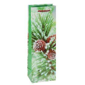 Пакет подарочный 'Шишечки', 36 х 12 х 8,5 см Ош