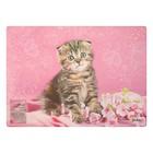 Накладка на стол дизайнерская «Котёнок в цветочках», для девочки, 337 х 242 мм, КН 4-1