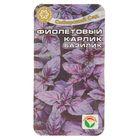 """Семена Базилик """"Карлик Фиолетовый"""", 0,5 г"""