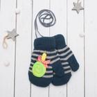 """Варежки с подкладом детские """"Леденец"""", размер 14, цвет тёмно-синий 58897"""