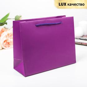 Пакет подарочный, фиолетовый, люкс, 24,5 х 9 х 19,5 см