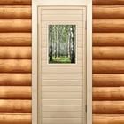 """Дверь для бани и сауны """"Берёзовая роща"""", 170х70см"""