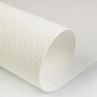 Картон цветной гофрированный 700*500 мм Werola e-wave, 110 г/м², белый