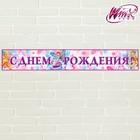 """Гирлянда-плакат """"С Днем Рождения!"""", феи ВИНКС, 91х14 см"""
