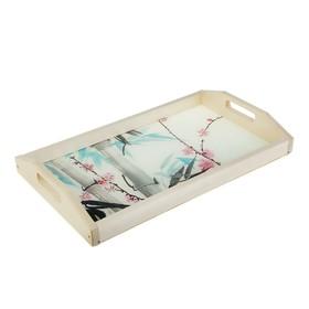 Поднос для завтрака 'Бамбук', стеклянная поверхность, 50х7х29,5см Ош