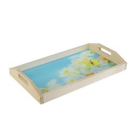 Поднос для завтрака 'Ромашки', стеклянная поверхность, 50х7х29,5смр-р длина 50см*высота 7см*   28740 Ош
