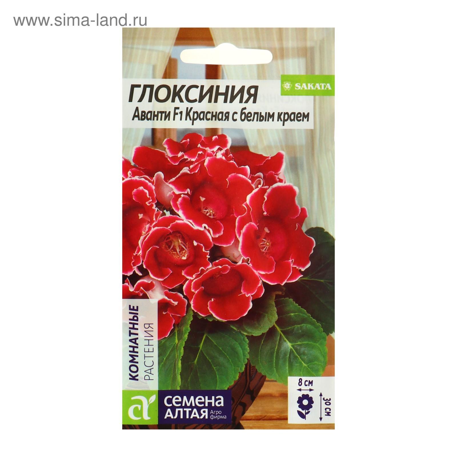 Семена комнатных и экзотических растений купить почтой в 98