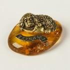 Сувенир «Спаниель на тапках», скучаю, натуральный янтарь