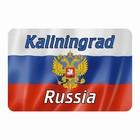 """Магнит полимерный """"Калининград"""" герб, 9х6см"""