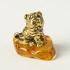 Сувенир «Шарпей», натуральный янтарь