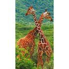 """Фотообои """"Жирафы"""" 1-А-109 (1 полотно), 150х270 см"""