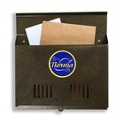 Ящик почтовый «Горизонталь», горизонтальный, без замка (с петлёй), цвет бронзовый