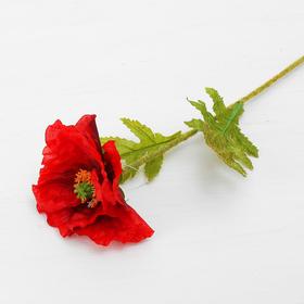 """Цветок искусственный """"Аргемона"""" 10*50 см, красный"""