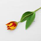 """Цветок искусственный """"Тюльпан Хавран"""" 4*34 см, жёлто-красный"""