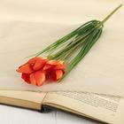 """Цветок искусственный """"Крокус Паллюкс"""" 28 см, оранжевый"""