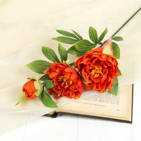 """Цветок искусственный """"Пион Анастасия"""" 54 см, оранжевый"""