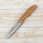 "Нож ""Мастак"" 9 см"