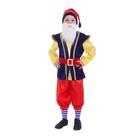 """Карнавальный костюм """"Гномик"""", колпак, рубаха с жилетом, бриджи, борода, ремень, цвет синий, р-р 28, рост 98-104 см"""